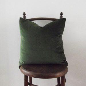 parrot green velvet cushion