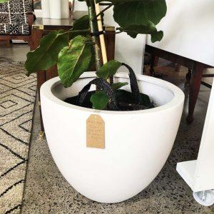 resin egg shaped pot