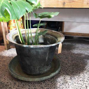 copper pot or bird bath